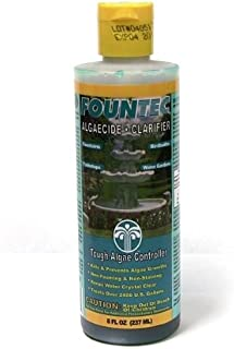 EasyCare FounTec Algaecide and Clarifier