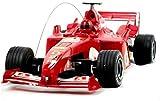 DJXWZX F1 Fórmula coche teledirigido controlada por radio del coche de RC 1/18 Controlador de cuatro ruedas deportes electrónicos de carreras Modelo F1 del coche con alta regalo niños de juguete de co