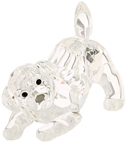 Swarovski Labrador Puppy, Playing, Kristall, transparent, 2,9 x 3,6 x 2,5 cm