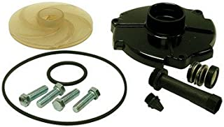 REPAIR KIT ACE 10S by PARTS 2 O MfrPartNo FPPKS100-P2