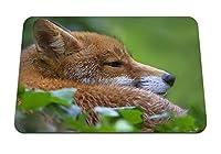22cmx18cm マウスパッド (キツネ顔草うそ) パターンカスタムの マウスパッド