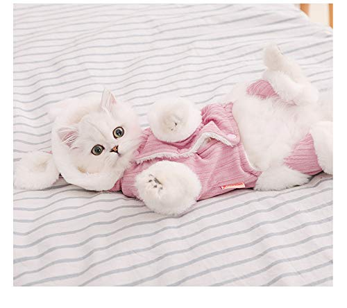 Ropa para Gatos Gato De Leche Pequeo Gato Britnico De Marioneta Corta Gato Suministros para Mascotas Invierno Clido Lindo Divertido Cuatro Patas Ropa De Otoo E Invierno S-Recomendado 3-5 kg