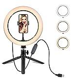 Anillo de luces LED con soporte para teléfono de 10 pulgadas de maquillaje con 3 modos de luz regulable y 11 niveles de brillo ajustables, 10inch big set