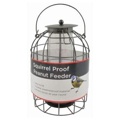 Redwood Leisure Bird Peanut Feeder Squirrel Proof Wild Bird Care Feed...