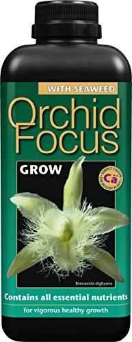 Orchid Focus Grow (Wachstum) 1 Liter