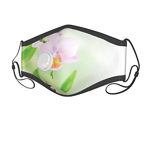 Fashion 3D Print Face Coverings Reuseable Washable,Zen Basalt Stones And Orchid With Dew Peaceful Nature Theraphy Massage Meditation Suitable for children aged 6-12,Breathable Dust Half Face Bandanas