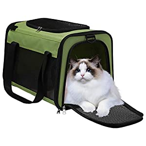 WDM Pet Travel Carrier Bag – Airline Approved Soft Sided Folding Pet Cage with Locking Safety Zippers, Removable Fleece Pad and Pockets for Small Medium Cats Dogs Puppies (L, Green)