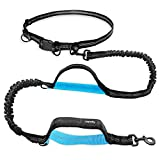 UPPETLY Hands Free Dog Leash Retractable with Dual Bungees for Medium and Large Dogs, Adjustable Waist Belt, Dual Handle, Reflective Stitches for Training Running Jogging Walking Hiking Biking