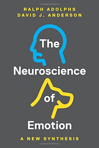 Image OfThe Neuroscience Of Emotion: A New Synthesis
