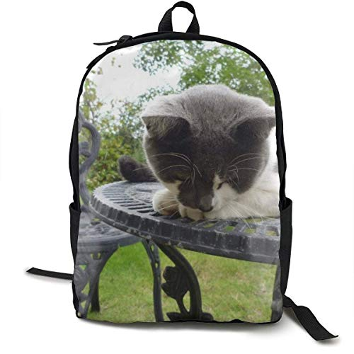 Cat Down Table Sleep Chair School Backpack School Bag Bookbag Travel Laptop Backpack Casual Daypack for Kids Students Adult