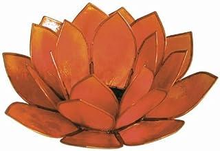 f75df841fc World Buyers Capiz Tea Light Holder, Three rings of translucent capiz shell  petals-Flickering