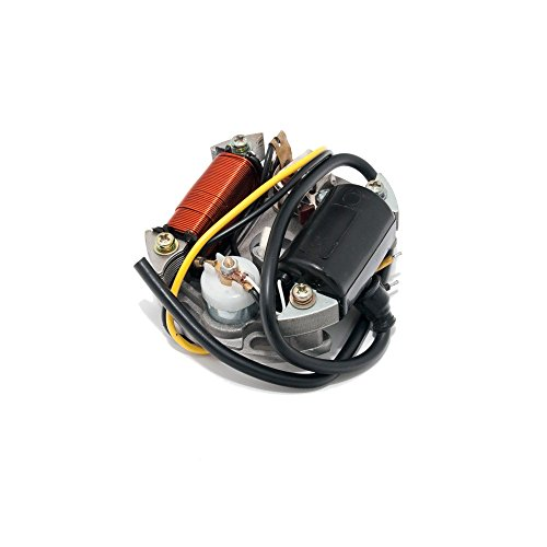 Lichtmaschine / Zündung 6V 15W für  Maxi Mofa