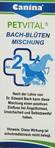 Canina Bach-Blüten No. 2, 1er Pack (1 x 10 g)