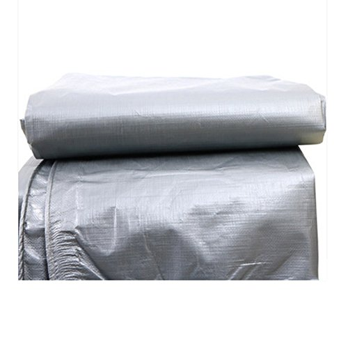 Doble cara impermeable lona sombrilla Portable plegable almacenamiento Picnic Mat Warehouse Car Furniture cubierta tienda de tela (Size : 2 * 3m)