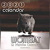 wombat: Cute Wombat Australian Animal '8.5x8.5' Inch Wall 2021 Calendar