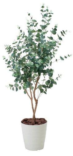 光触媒観葉植物 ユーカリ1.25 フロアタイプ ミドルサイズ 光触媒 花 スプレー インテリアグリーン 胡蝶蘭 消臭 大型