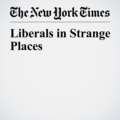 Liberals in Strange Places copertina
