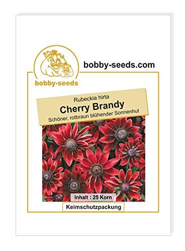 Cherry Brandy Rudbeckiasamen Sonnenhut von Bobby-Seeds Portion