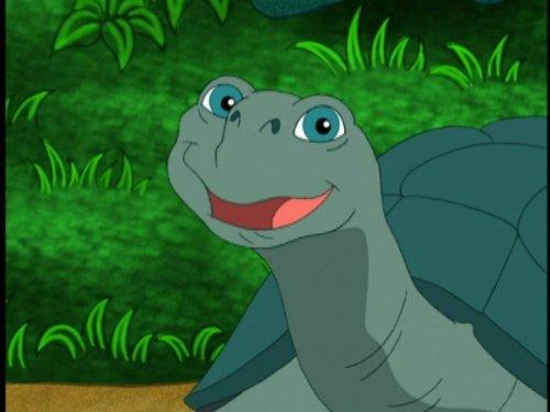 Save The Giant Tortoises