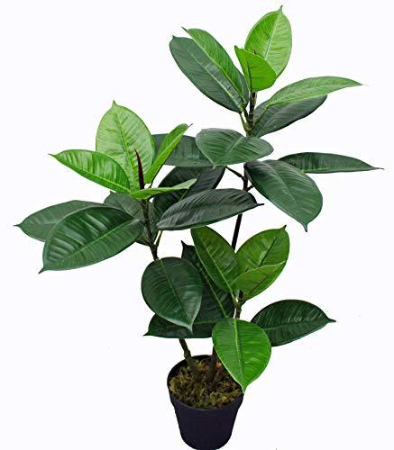 yanka-style Künstlicher GUMMIBAUM mit Topf ca. 75 cm hoch Kunstpflanze künstliche Pflanze Kunstbaum Baum Bäumchen Blume Deko Dekoration Geschenk (JWS3119)