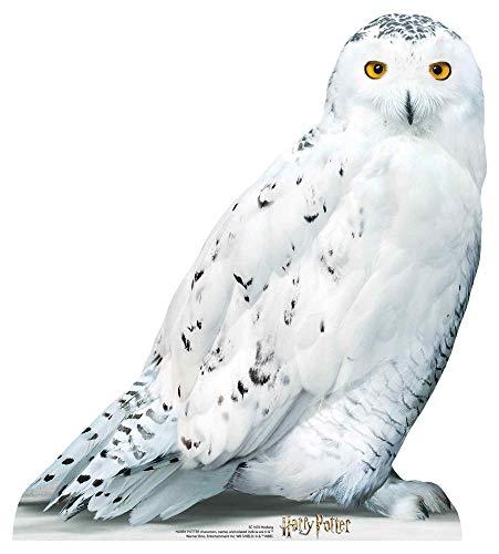 STAR CUTOUTS SC1476 Hedwig Star Mini Harry Pappaufsteller Lebensgröße Perfekter Spaß für Potter-Fans Höhe 74 cm