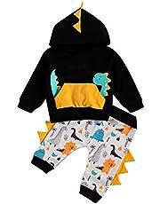 Bebé Conjunto Deportivo Chándal Sudadera de Manga Larga con Capucha+ Pantalones para Niños Pequeños 0-5 Años Traje de Ropa Otoño Invierno