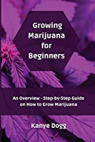 Growing Marijuana for Beginners: An Overview - Step-by-Step Guide on How to Grow Marijuana
