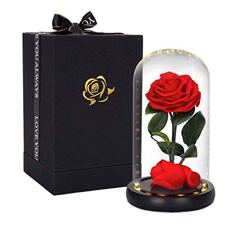 Ewige Rose im Glas, HelaAccueil die schöne und das biest Rose With LED Light and Gift Box Valentinstag Geschenk Muttertagsgeschenk Weihnachtsgeschenk (Die Schöne und das Biest Rose)
