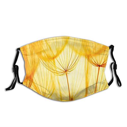 Fillter Face Cloth for Adults,Joy of Dandelion Flower Garden Seeds in Hot Summer Time Themed Artwork,Cold Mouth Dustproof Double Protection