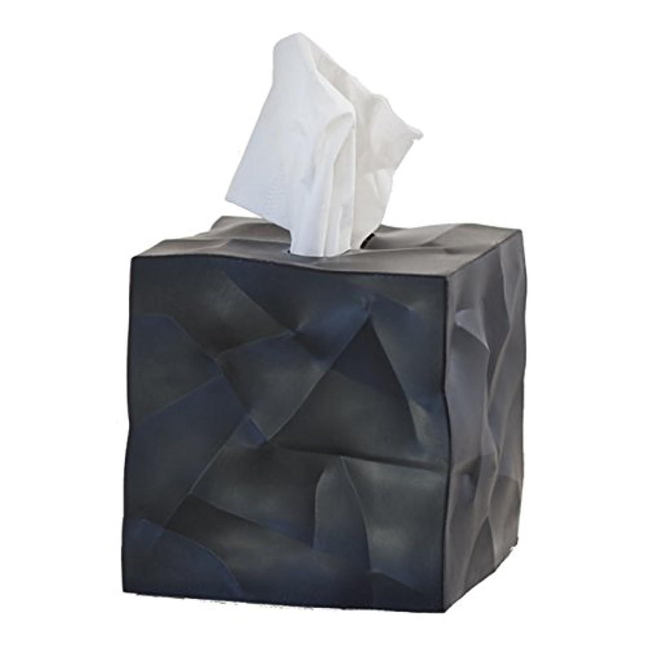 漂流興奮する本質的にessey Wipy Cube ティッシュボックスカバー (ブラック)