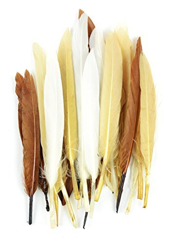 Midwest Design Touch of Nature 24-Piece Mini Indian 3-Inch Vibrant Feather Assortment for Arts and Craft
