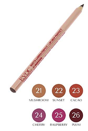 Crayon Lèvres Perfect 25
