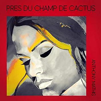 Près du Champ de Cactus