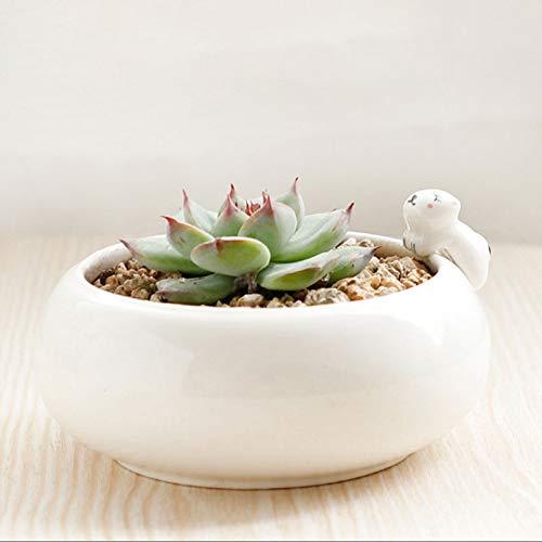 Maceta decorativa La siembra de plantas Conservación Pot cubierta con drenaje Agujero Tiesto Oficina de escritorio pequeño Bonsai transpirable cerámica suculento de Tiesto Maceta de jardín