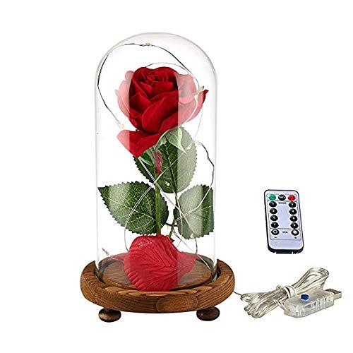 YSBER'Beauty and The Beast', rosa de seda roja y luz LED con pétalos caídos en una cúpula de vidrio sobre una base de madera (Cálida sombra rosa blanca)