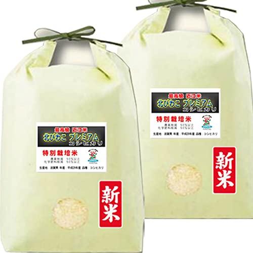 新米入荷 令和3年産 新米 特別栽培米 プレミアム コシヒカリ10kg (5kg×2袋) 滋賀産 北びわこ 近江米 (5分づき 約4.75kg×2袋でお届け)