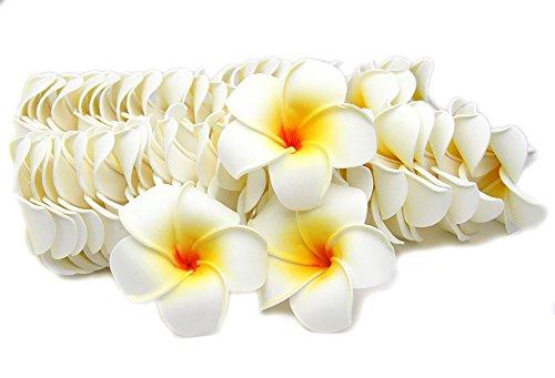 GLOBAL BOX プルメリア 造花 花のみ 7cm 白 50個