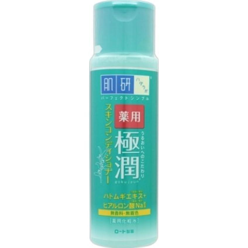 統合する皮安いです肌研(ハダラボ) 薬用極潤スキンコンディショナー × 48個セット