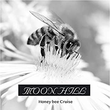 Honey bee Cruise
