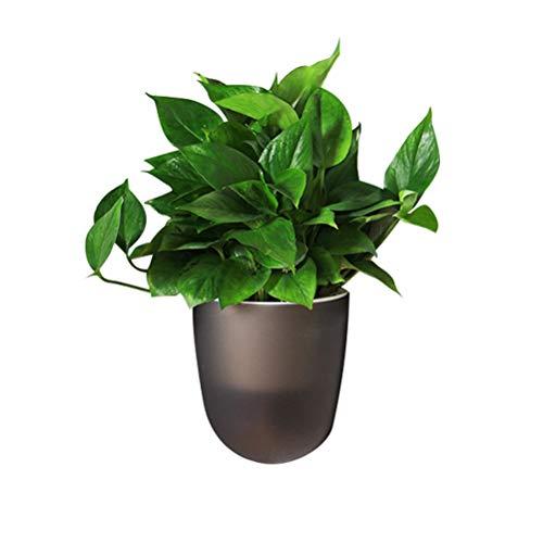 Macabolo - Vaso angolare per piante da parete, vaso da fiori autoirrigante, in plastica