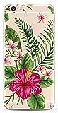 NOVAGO Compatible avec iPhone 6,iPhone 6s Coque Gel Souple incassable Résistant Antichoc avec Impression Motif Fantaisie Durable(Bouquet Exotique)