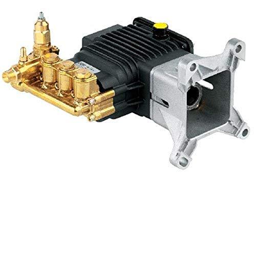 AR ANNOVI REVERBERI RSV4G40HDF40EZ 4000 PSI EZ Start Triplex Kolbenpumpen, 4 GPM, Multi
