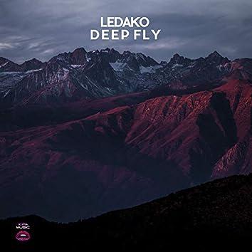 Deep Fly