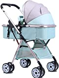 DAGCOT Conjunto 3 en 1 Cochecito de coches de alta paisaje cochecito de bebé con el arnés de cinco puntos, compacto plegable for cochecito de niño recién nacido sistema de viaje, verde
