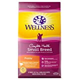 Wellness Complete Health Natural Dry Small Breed Puppy Food, Turkey, Salmon & Oatmeal, 4-Pound Bag