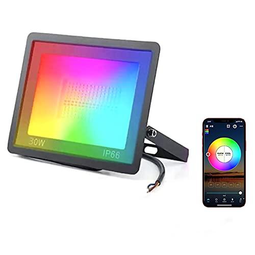 MINGRT 30W WiFi Foco Led, IP66 Impermeable Inteligente LED Exterior Compatible con Alexa Google, Control de Voz, 2700K-6500K Floodlight RGB para Fiesta Jardín Patio (Color : 50w)