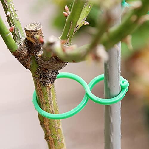 Dingzing 100 pcs Clips para Plantas de Jardín Reutilizable Plastico Abrazadera para Asegurar y Conectando Plantas Trepadoras Tomates Flores Tallos Grow Vertical Pinzas para Flores