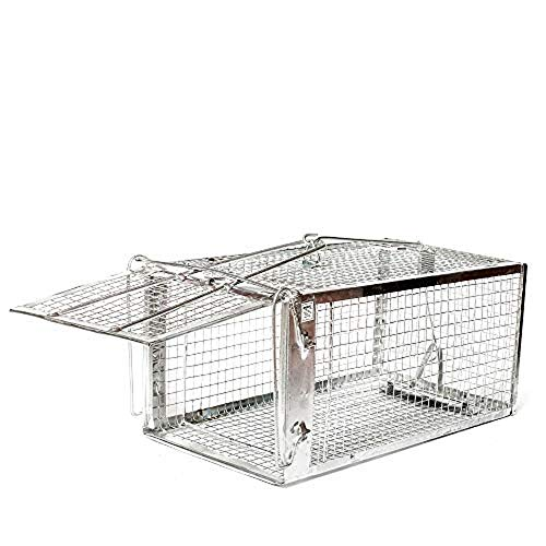 AB Traps Quality Live Animal Humane Trap Catch and Release for Rats Mouse Mice Chipmunks Hamsters Weasels Rodents Trampa para Ratones, Voles and Similar Sized Pests - Safe and Effective Medium Size