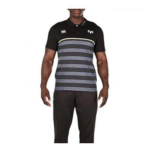 2017-2018 Ospreys Rugby Cotton Stripe Polo Shirt (Tap Shoe)