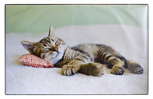 Idena 14016 Bureau-onderlegger van kunststof met twee insteekzakken, kat, ca. 68 x 44 cm, meerkleurig